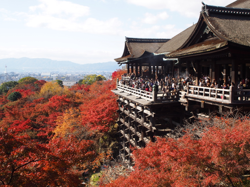 Kyoto1311232
