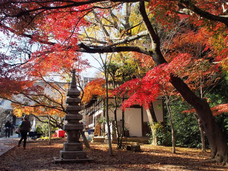 Kyoto14113011