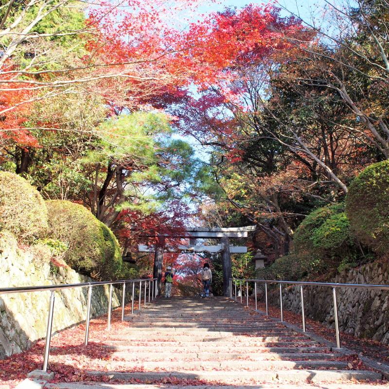 Kyoto1411302_2
