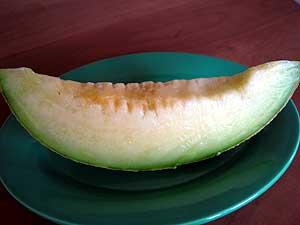 Homaremelon2