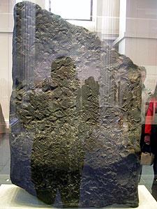 Rosetta2
